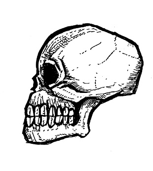 skull drawings, gothic art