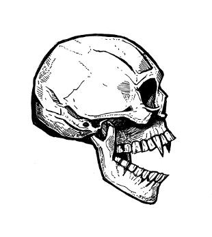 skull drawings, gothic vampires