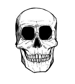 skull drawings,
